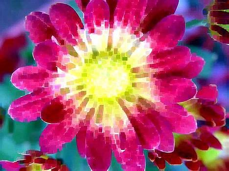 Flower Power by Gabe Art Inc