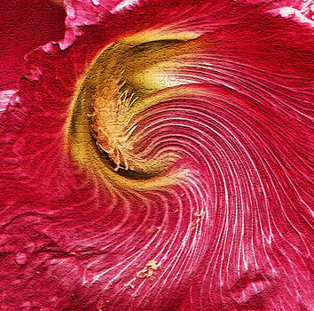 James Steele - Flower Power