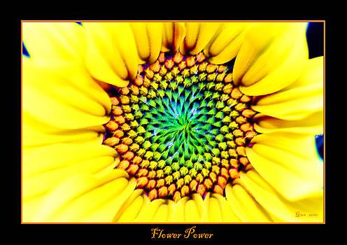 Nick Gustafson - Flower Power