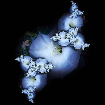 Nick Heap - Flower Fractal