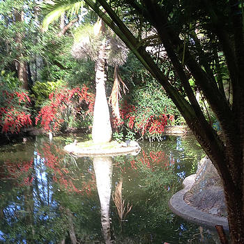 Flower Reflections #2 Jordan River by Susan Grunin