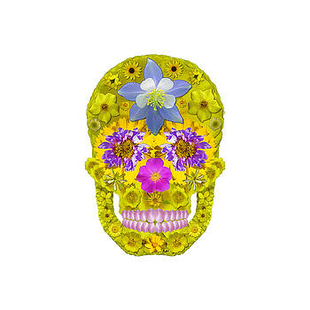 Flower Skull 3 by Agustin Goba