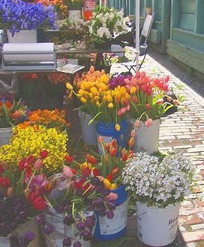 Lydia L Kramer - Flower Stalls