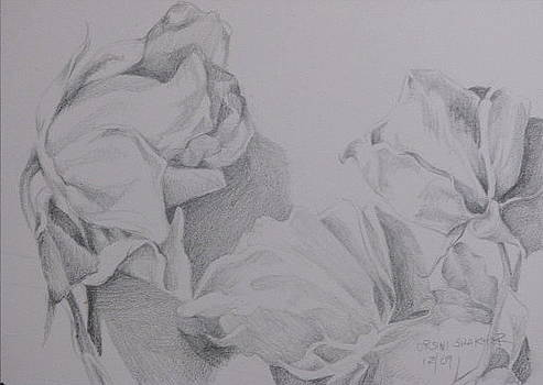 Flower Study 2 by Julie Orsini Shakher