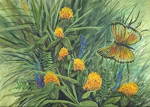 Flower study eleven by Darren Cannell