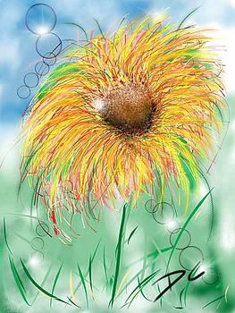 Flower study five by Darren Cannell