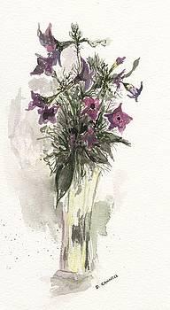 Flower study fourteen by Darren Cannell