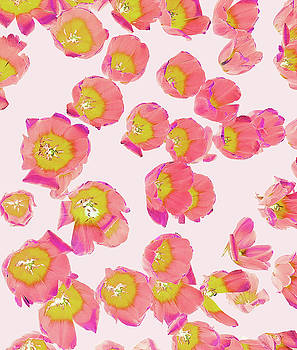 Flower Therapy by Uma Gokhale