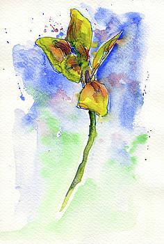 Flower Two by John D Benson