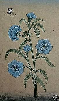 Flower by Unknown