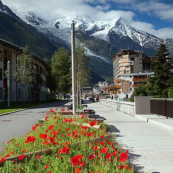 Aivar Mikko - Flowerbeds, Chamonix