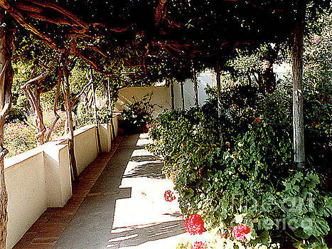 Flowered Walkway in AnaCapri on the Isle of Capri, Italy by Merton Allen