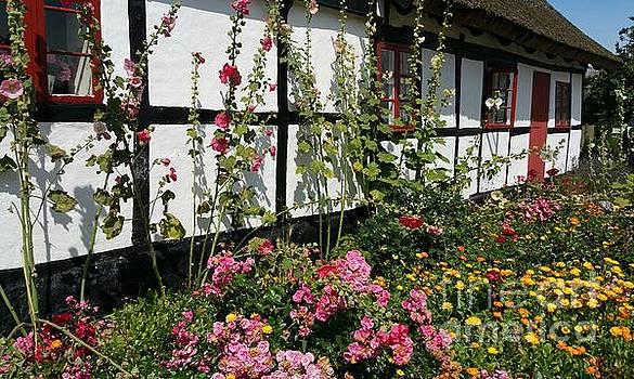 Flowergarden by Susanne Baumann