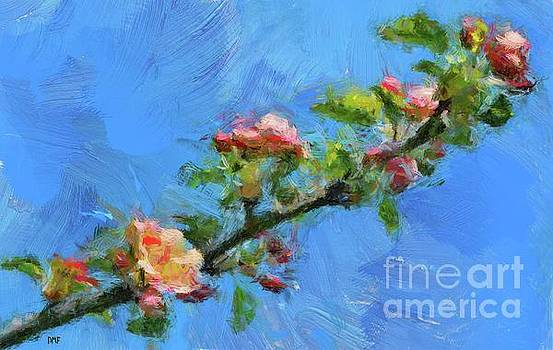 Flowering Apple Branch by Dragica Micki Fortuna