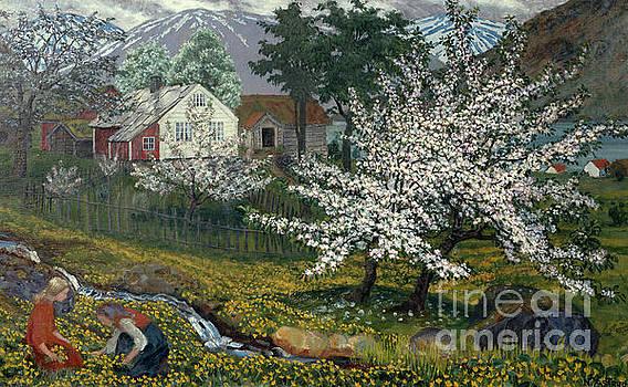 Flowering apple tree at Stroemsbo farm by Nikolai Astrup