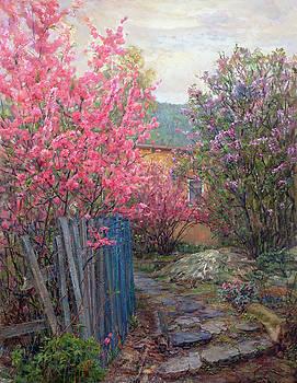 Flowering cherry by Galina Gladkaya