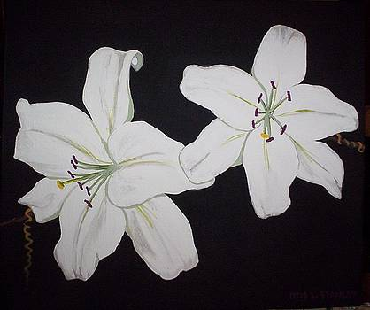 Flowers 3 by Otis L Stanley