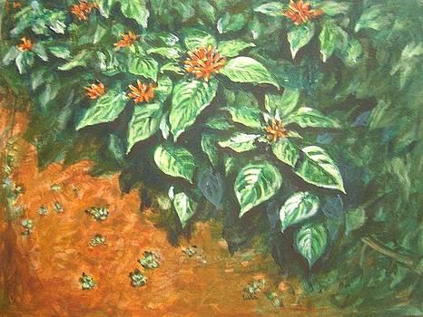 Usha Shantharam - Flowers and earth
