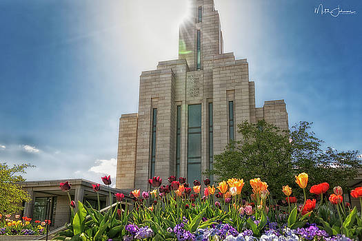 Flowers and Temple by Mitch Johanson
