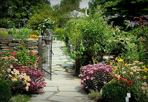 Flowers At The Garden Gate by Lori Seaman