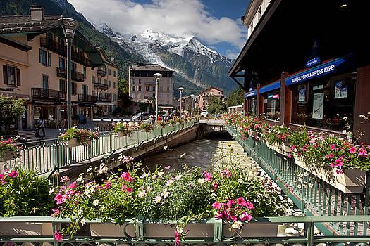 Flowers, Chamonix by Aivar Mikko