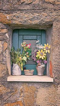 Flowers in Lemmen Cinque Terre Italy by Joan Carroll