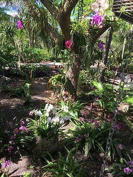 Flowers in Paradise #1 by Susan Grunin