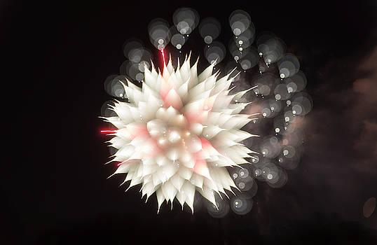 Alex Lapidus - Flowers in the Sky