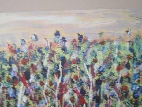Flowers in Wonderland by Shannon Barnes