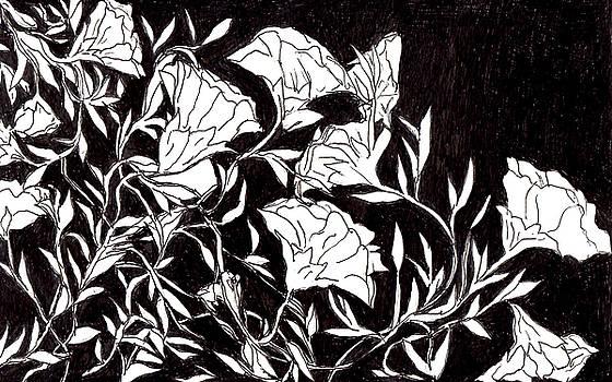 Flowers by Lou Belcher