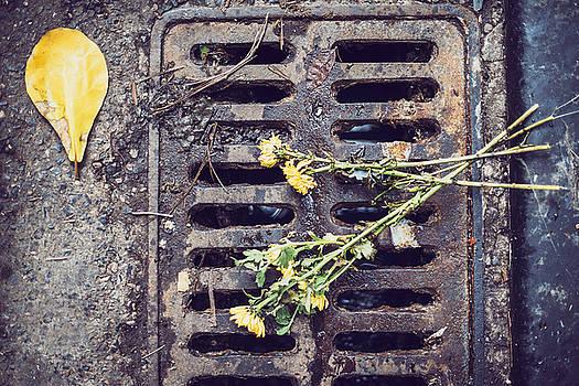 Flowers over sewer by Eduardo Huelin