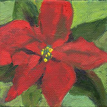 Flowers Pointsettia by Kathleen Barnes