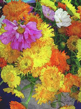 James Temple - Flowers That Smile Digital Watercolor