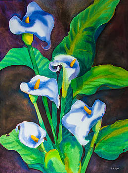 Callas by Vickie Myers