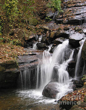 Flowing Cascade by Julie McCullough
