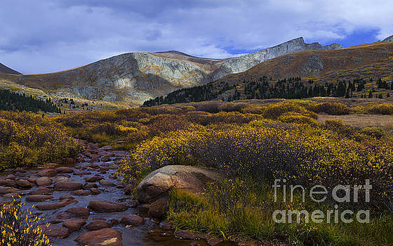 Flowing From Bierstadt by Barbara Schultheis