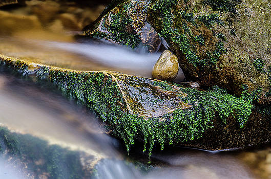 Flowing by Martina Fagan