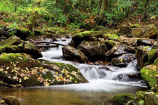 Jill Lang - Flowing Water