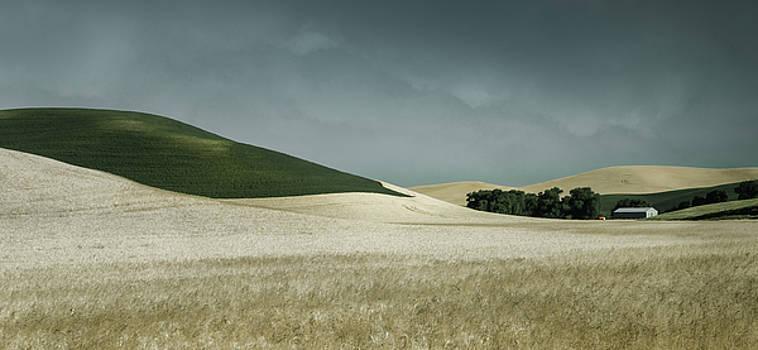 Flowing Wheat by Don Schwartz