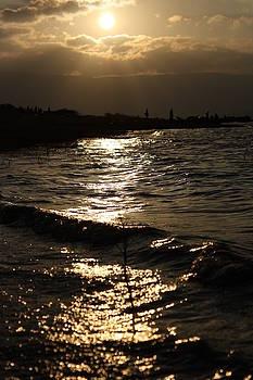 Fluid sunlight by Vishakha Bhagat