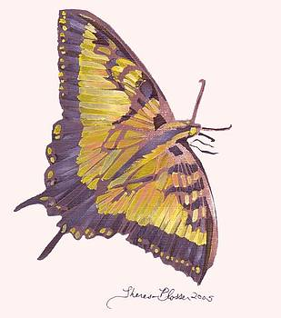 Flutterby by Theresa Blosser