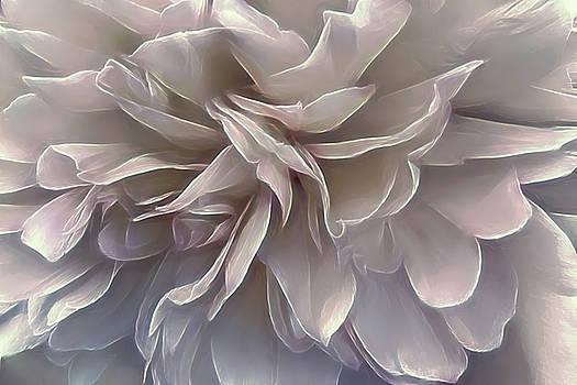 Fluttering Peony by Darlene Kwiatkowski
