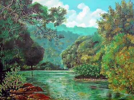 Fluye el Tabasara by Ricardo Sanchez Beitia