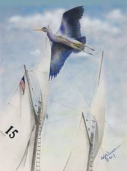 Fly By by Ralph Duncan
