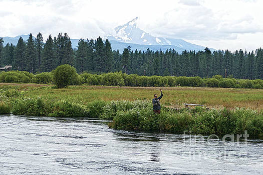 Fly Fisherman on the Metolius River, Oregon by Catherine Sherman