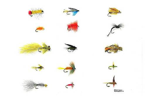 Fly Fishing Nymphs Wet and Dry Flies by Sharon Blanchard