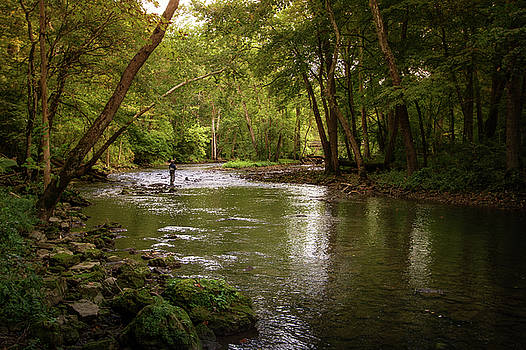 Fly Fishing by Victoria Winningham