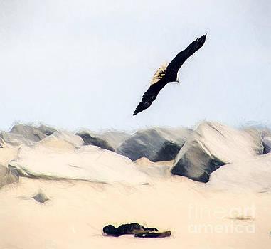 Fly Free by Billie-Jo Miller