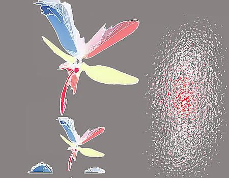 Fly in the wing by Aline Pottier  Gama Duarte