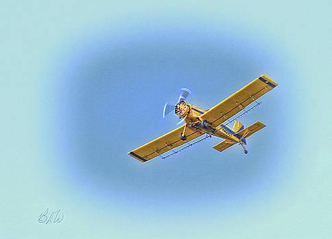 flyin' High by Bonnie Willis